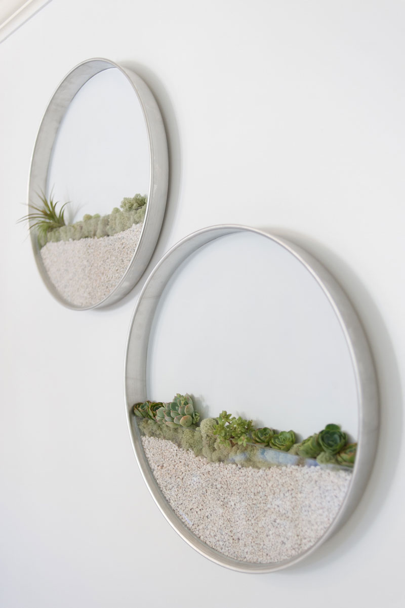 Vertical Wall Terrariums By Kim Fisher