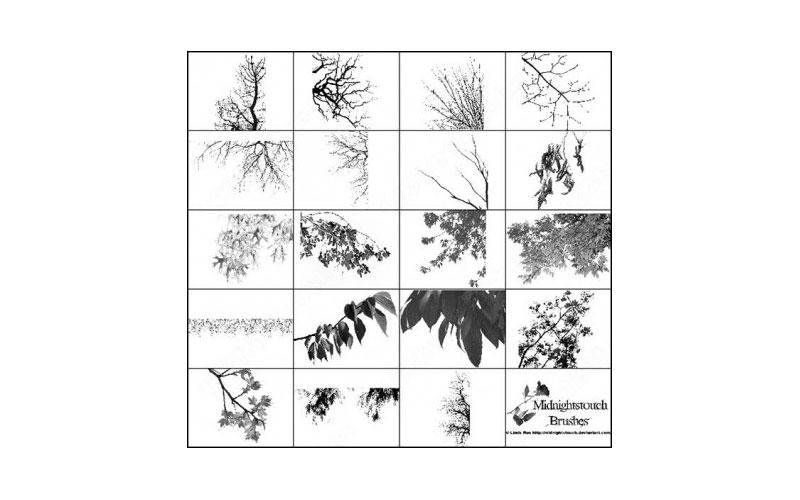 60_photoshop_7_tree_branches_brush_39374