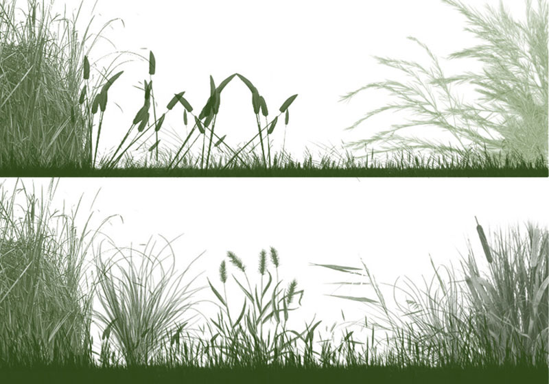 the-grasslands-photoshop-brushes