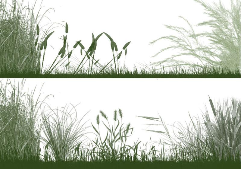 the-grasslands-photoshop-brushes