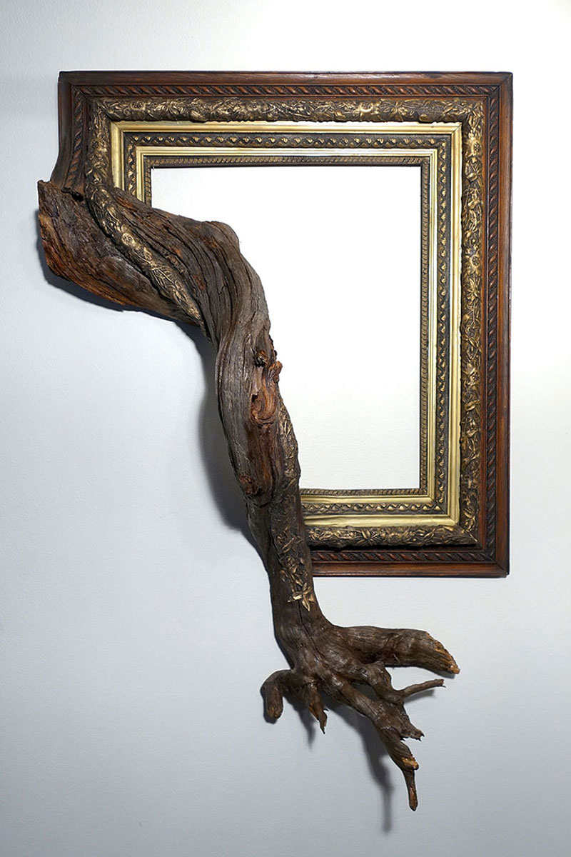 Darryl Cox thinks outside the box with branches coming out of his frames
