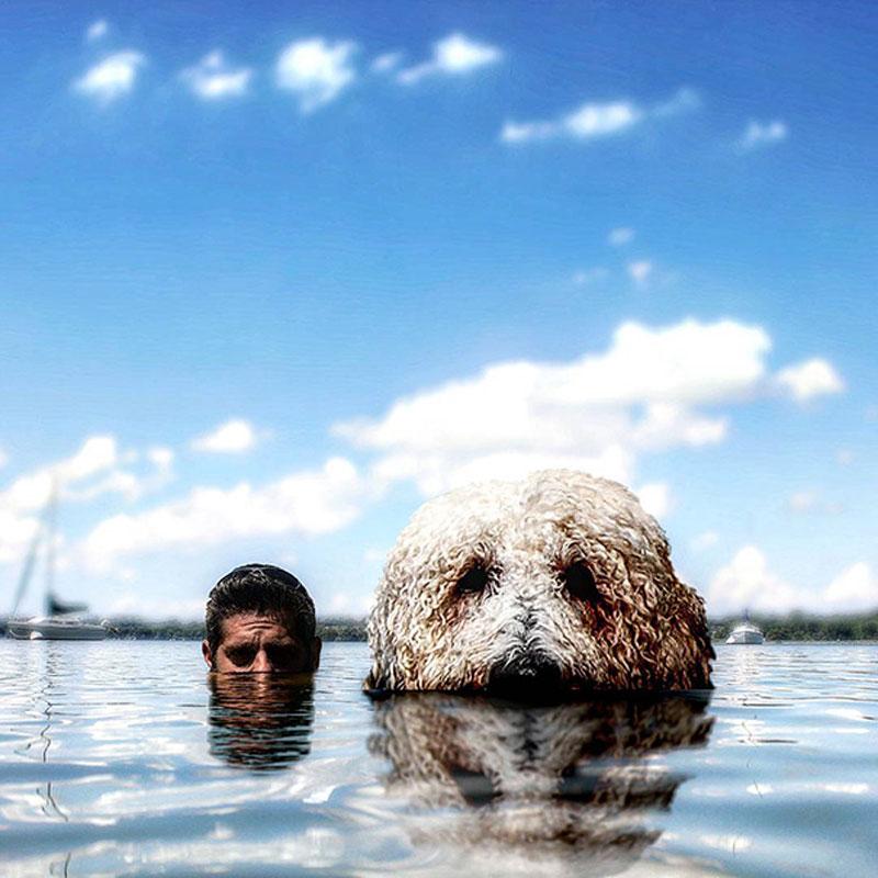 giant-dog-photoshop-adventures-juji-christopher-cline-13