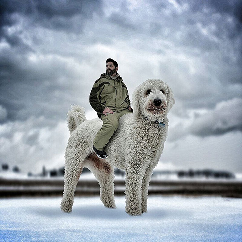 giant-dog-photoshop-adventures-juji-christopher-cline-4
