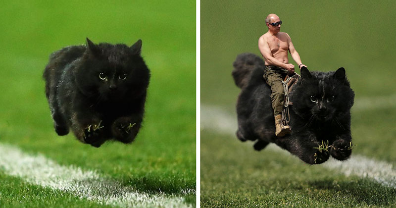 Why the world needs Photoshop battles
