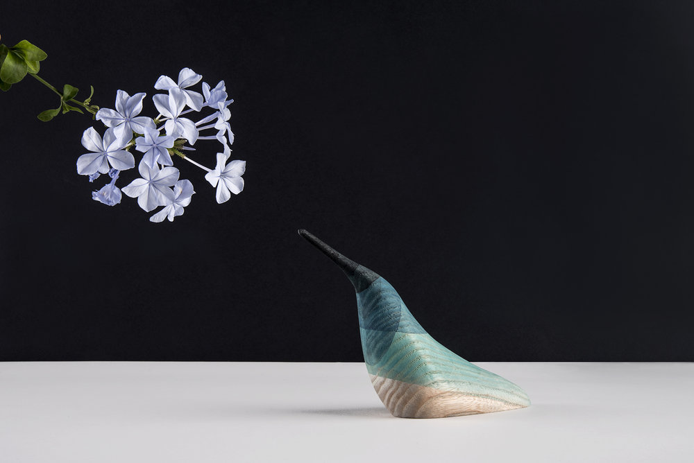 Gorgeous immersed birds by Moisés Hernández