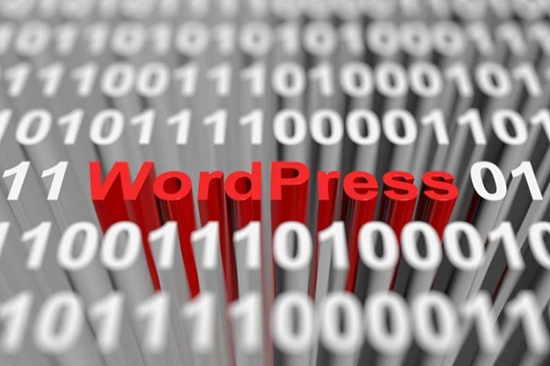 The Differences Between WordPress.COM vs WordPress.ORG