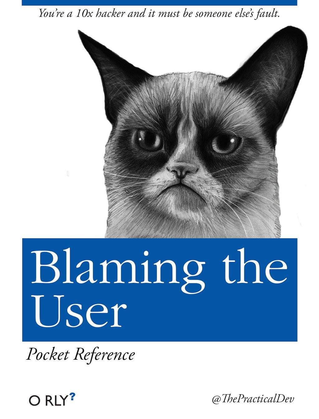 blamin the user