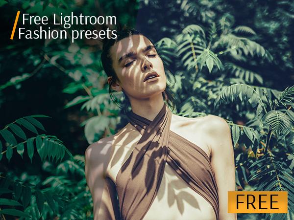 The best free presets for Lightroom