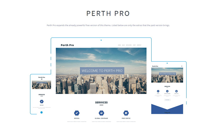 Perth Pro Theme
