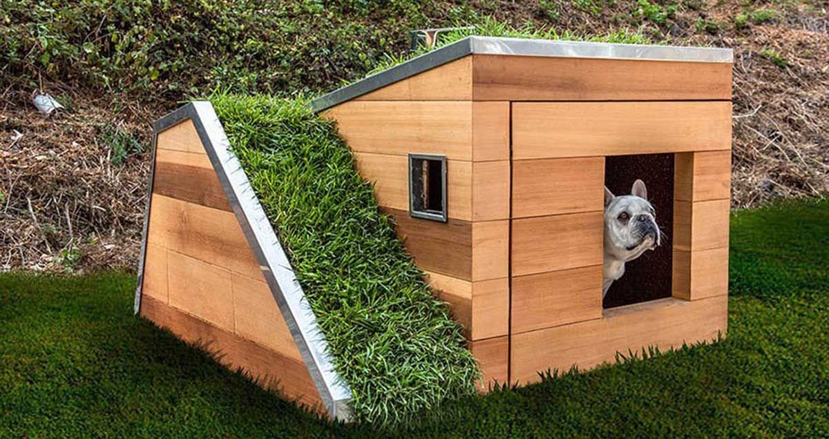 The dream dog house by Studio Schicketanz
