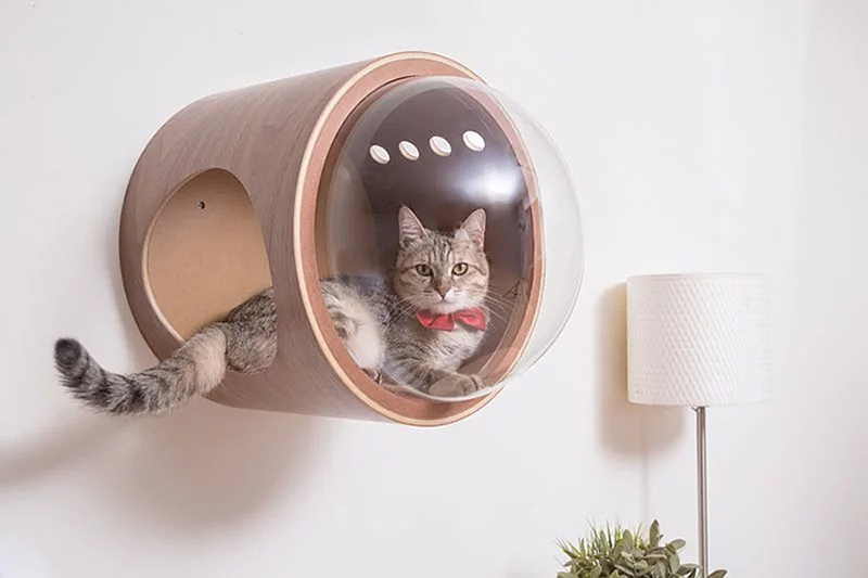 MyZoo creates cat beds that are inspired by spaceships