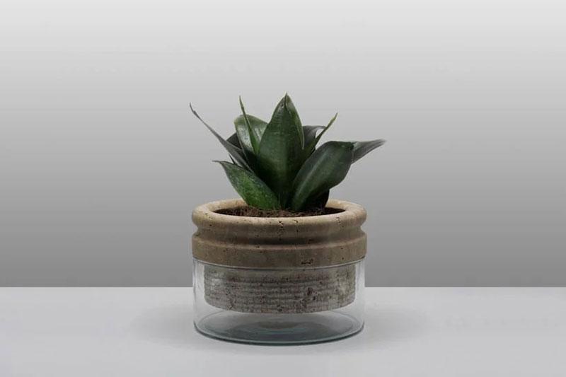 Sponge Flowerpot by Moreno Ratti