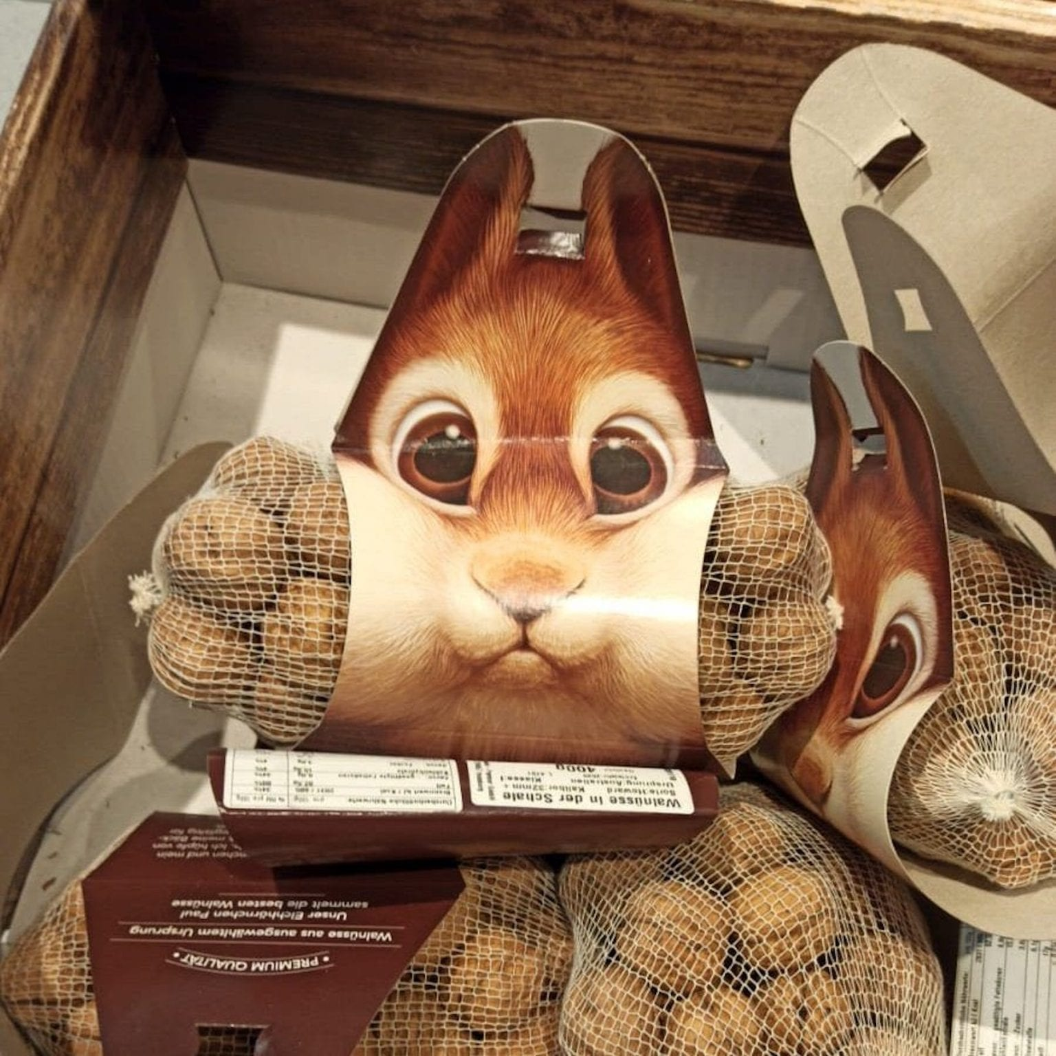 A Lovely Nuts Packaging Shaped As A Squirrel