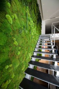 8 Tips to for Green Design