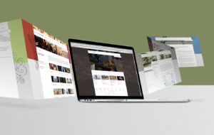 What to look for when picking a website designer
